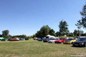 A Group of Hondas stand on the meadow